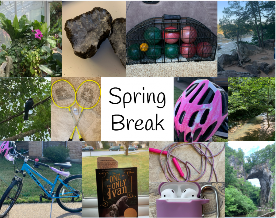 5 Things to do Over Spring Break