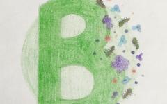Alphabetology: B is for Bacteria